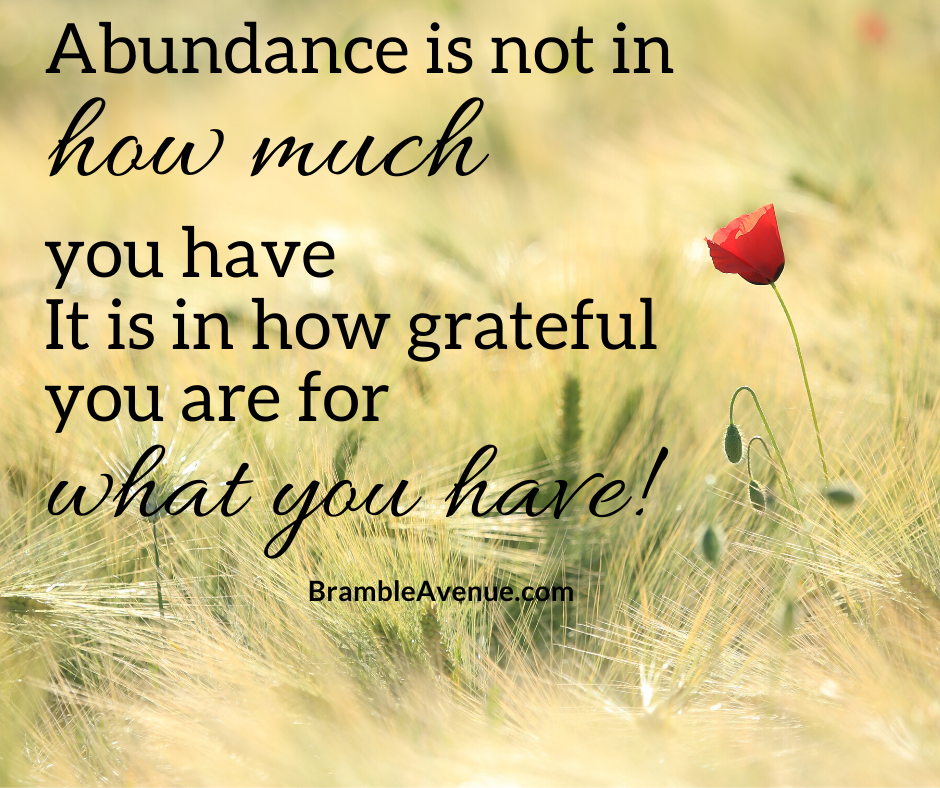 abundance quote learning to be happy with a simple life
