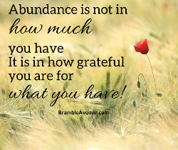 abundance is in how thankful you are
