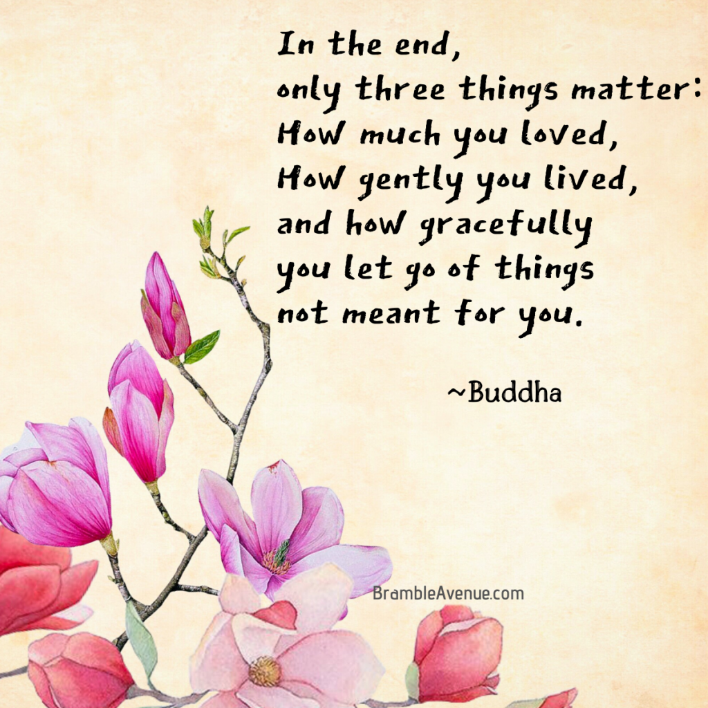 in the end buddha quote