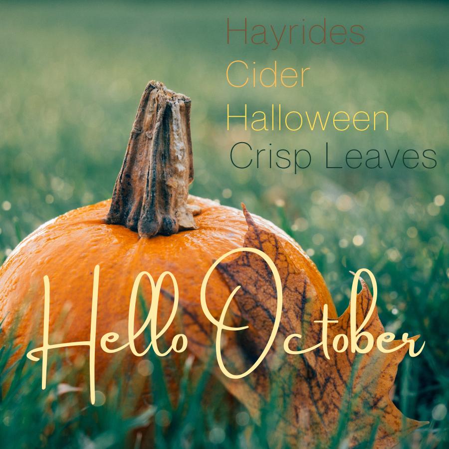 Hello October Hayrides cider halloween