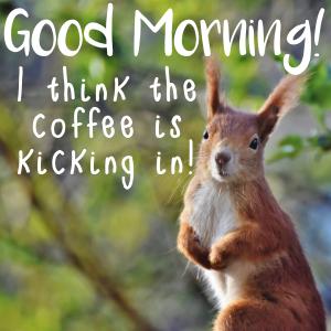 coffee kickin in meme
