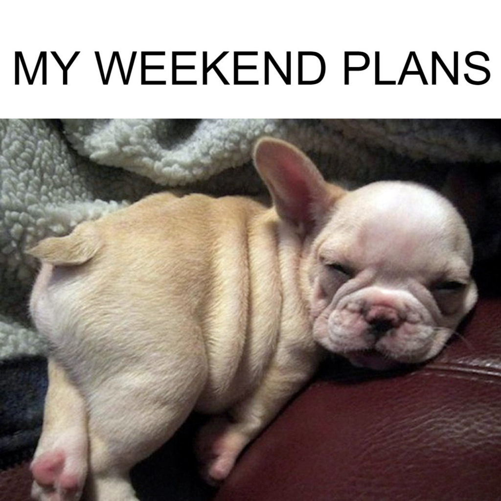 FUNNY WEEKEND PLANS MEME