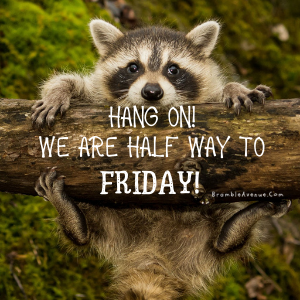hang on almost friday meme